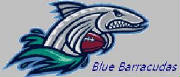 bluebarracudasnewlogo.jpg